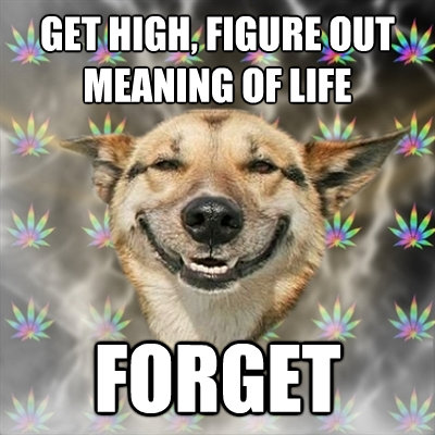 get high figure out meaning of life forget - Stoner Dog