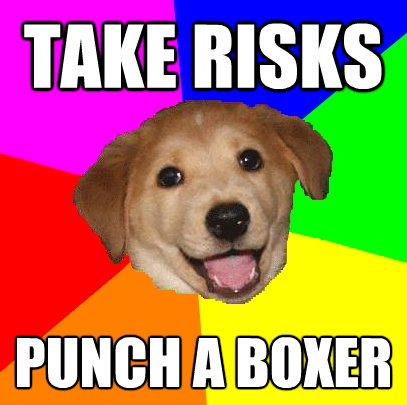 take risks punch a boxer - Advice Dog