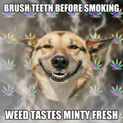 brush teeth before smoking weed tastes minty fresh - Stoner Dog