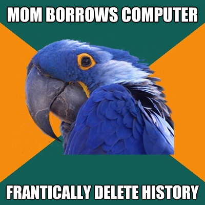 mom borrows computer frantically delete history - Paranoid Parrot