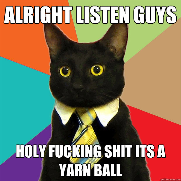 alright listen guys holy fucking shit its a yarn ball - Business Cat