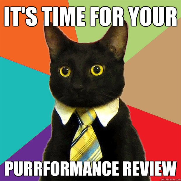 its time for your purrformance review - Business Cat
