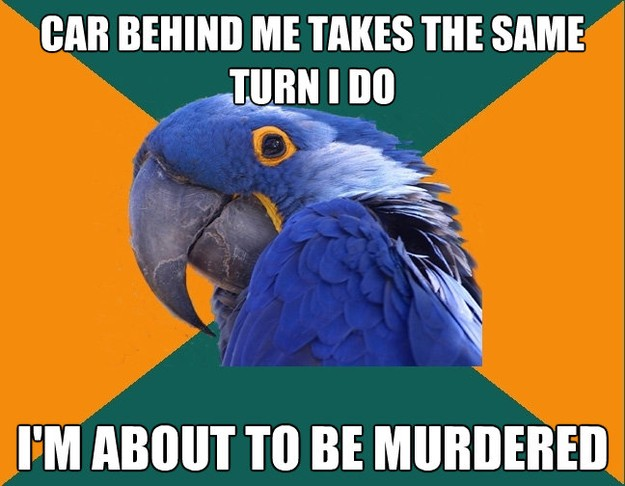 car behind me takes the same turn i do im about to be murde - Paranoid Parrot