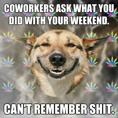 coworkers ask what you did with your weekend cant remember - Stoner Dog