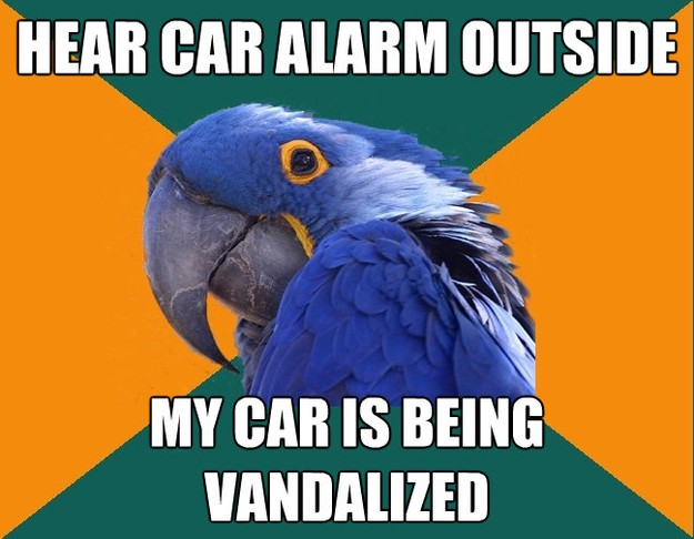 hear car alarm outside my car is being vandalized - Paranoid Parrot