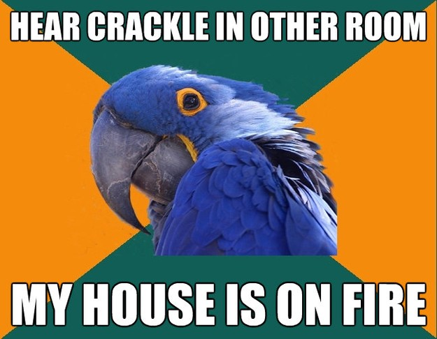 hear crackle in other room my house is on fire - Paranoid Parrot