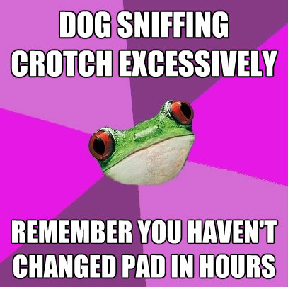 dog sniffing crotch excessively remember you havent change - Foul Bachelorette Frog