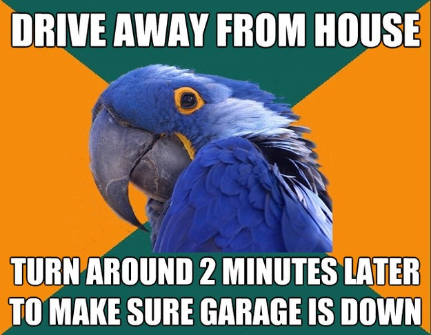 drive away from house turn around 2 minutes later to make su - Paranoid Parrot