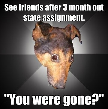 see friends after 3 month out state assignment you were go - Depression Dog