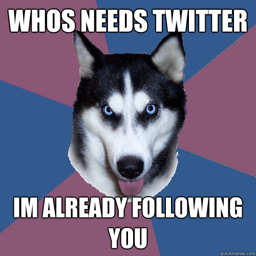 whos needs twitter im already following you - Creeper Canine