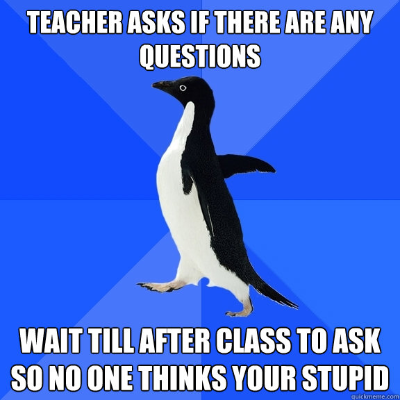 teacher asks if there are any questions wait till after clas - Socially Awkward Penguin