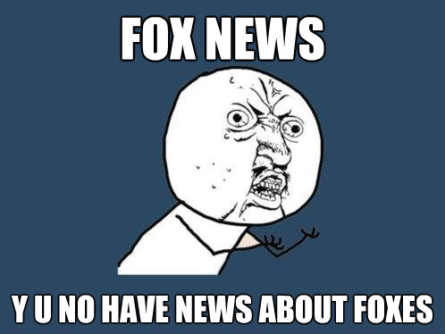 fox news y u no have news about foxes - Y U No