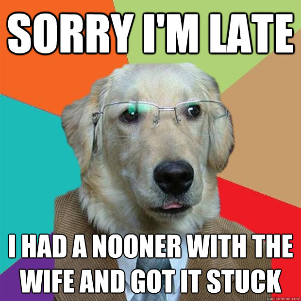 sorry im late i had a nooner with the wife and got it stuck - Business Dog