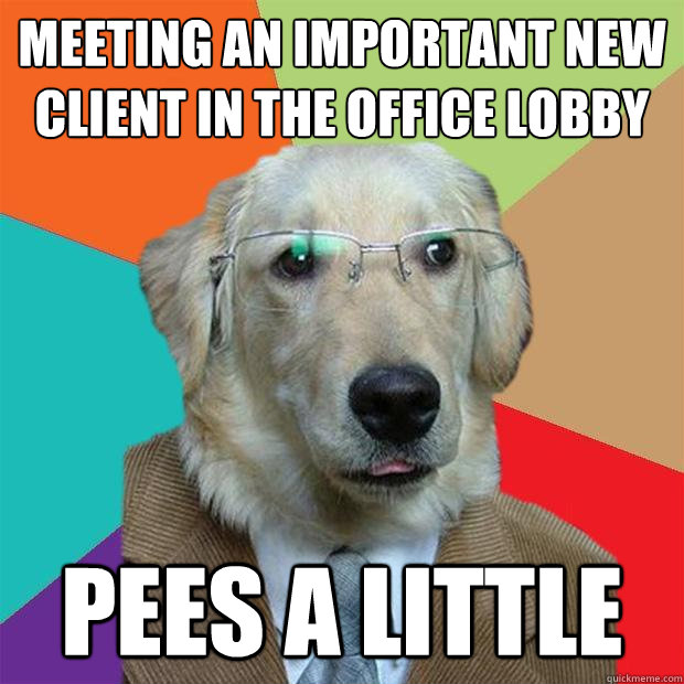 meeting an important new client in the office lobby pees a l - Business Dog