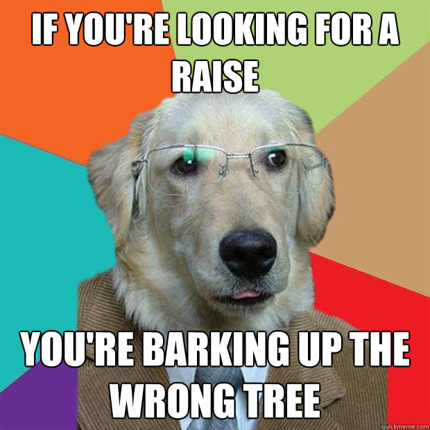 if youre looking for a raise youre barking up the wrong tr - Business Dog
