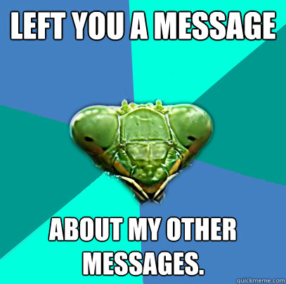 left you a message about my other messages - Crazy Girlfriend Praying Mantis