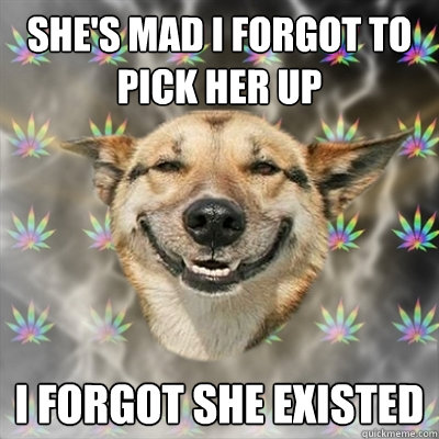 shes mad i forgot to pick her up i forgot she existed - Stoner Dog