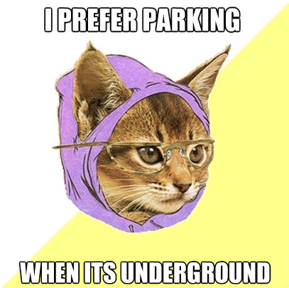i prefer parking when its underground - Hipster Kitty