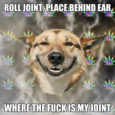 roll joint place behind ear where the fuck is my joint - Stoner Dog