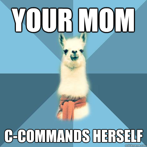 your mom ccommands herself - Linguist Llama