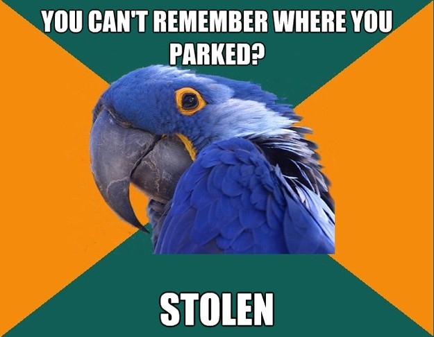 you cant remember where you parked stolen  - Paranoid Parrot