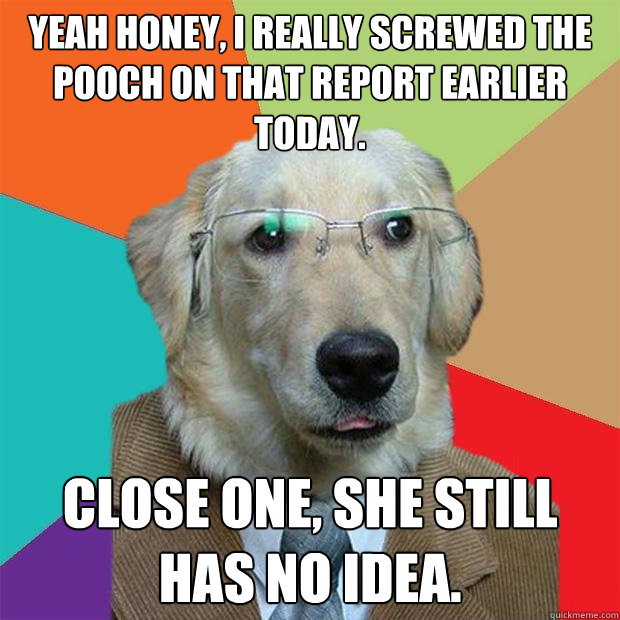 yeah honey i really screwed the pooch on that report earlie - Business Dog