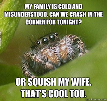 my family is cold and misunderstood can we crash in the cor - Misunderstood Spider