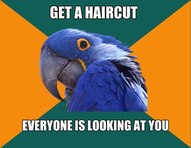 get a haircut everyone is looking at you  - Paranoid Parrot