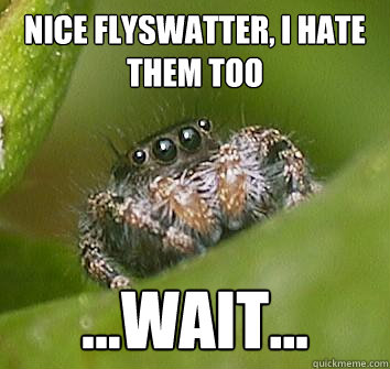 nice flyswatter i hate them too wait - Misunderstood Spider