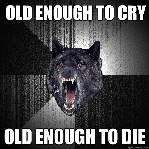 old enough to cry old enough to die - Insanity Wolf