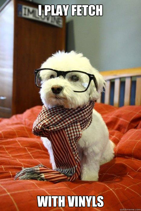 i play fetch with vinyls caption 3 goes here - Hipster Dog