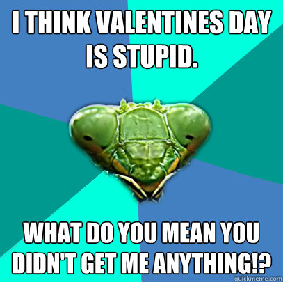 i think valentines day is stupid what do you mean you didn - Crazy Girlfriend Praying Mantis