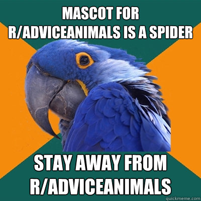 mascot for radviceanimals is a spider stay away from radvi - Paranoid Parrot