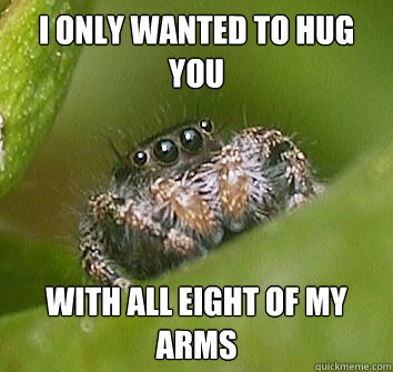 i only wanted to hug you with all eight of my arms - Misunderstood Spider