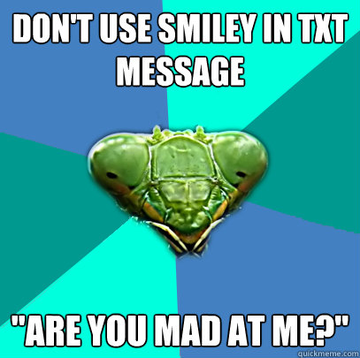 dont use smiley in txt message are you mad at me - Crazy Girlfriend Praying Mantis