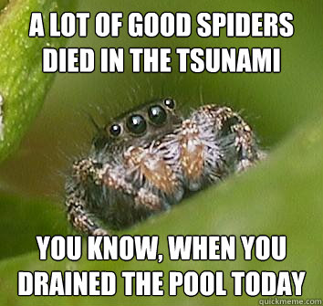 a lot of good spiders died in the tsunami you know when you - Misunderstood Spider