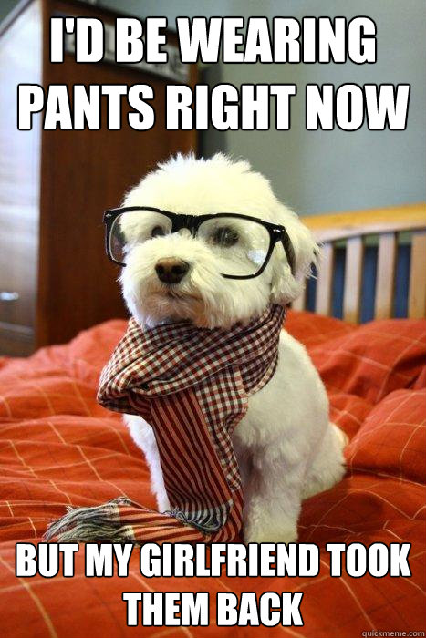 id be wearing pants right now but my girlfriend took them b - Hipster Dog