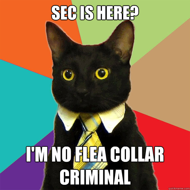 sec is here im no flea collar criminal - Business Cat