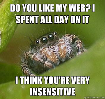 do you like my web i spent all day on it i think youre ver - Misunderstood Spider