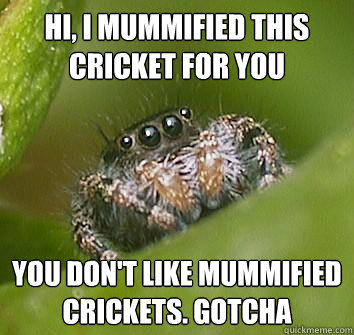 hi i mummified this cricket for you you dont like mummifie - Misunderstood Spider
