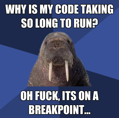 why is my code taking so long to run oh fuck its on a brea - Web Developer Walrus