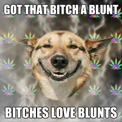 got that bitch a blunt bitches love blunts - Stoner Dog