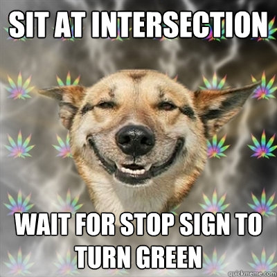 sit at intersection wait for stop sign to turn green - Stoner Dog