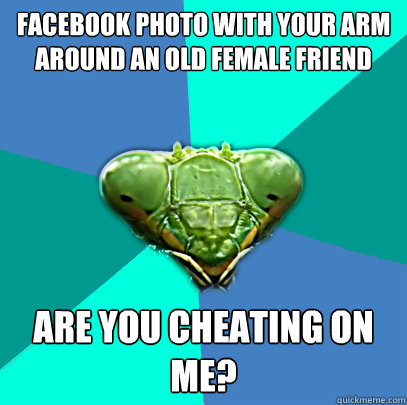 facebook photo with your arm around an old female friend are - Crazy Girlfriend Praying Mantis