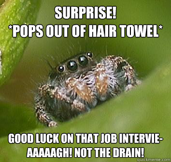 surprise pops out of hair towel good luck on that job in - Misunderstood Spider